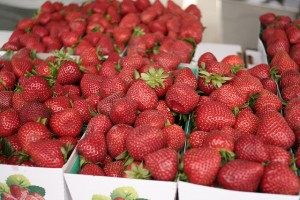 Strawberries, Photo by Justin Sewell